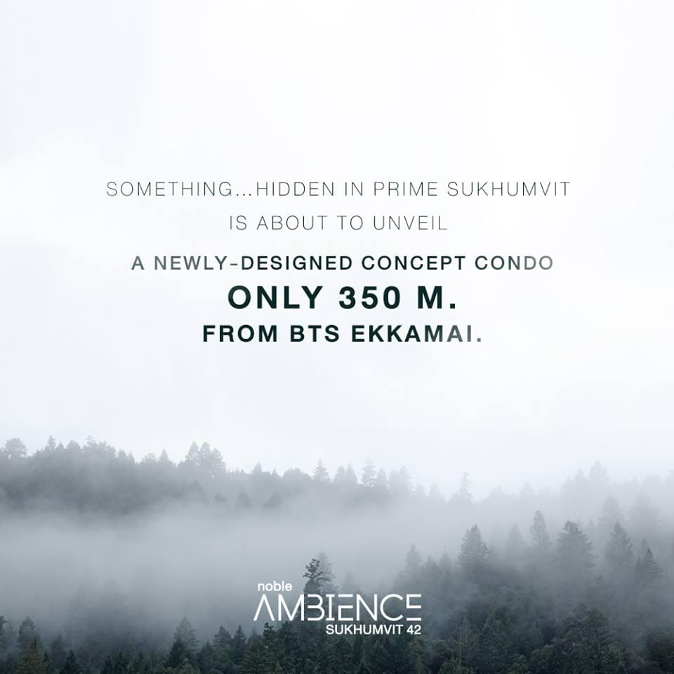 Noble-Ambience